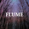 Sleepless (Nick Grader Remix) - Flume feat. Jezzabell Doran [FREE DOWNLOAD]