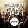 Electric Vibes With Skara (Volume 1) ~ Top 40 Chart toppers and Electro/Progressive House Mix 2015