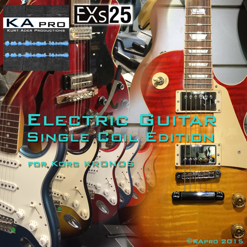 EXs25 Electric Guitar Single Coil Edition