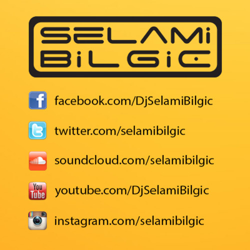 Sertab Erener - Aldirma Deli Gonlum 2010 (Selami Bilgic Remix)