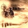 Empire Of The Sun - Wandering Star (JNp Remix)