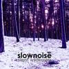Slownoise - Capitol Dub