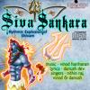 Siva Shankara - An Aghoric Rhythmic Explosion Of Sivam