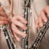 Johann Wenth Petite Serenade Concertante in F major Adagio Con Espressione 4th movt Trailer