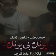 احمد باطبی و شاهین نجفی -پرنده بی پرنده