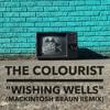 The Colourist - Wishing Wells (Mackintosh Braun Remix)