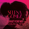 Selena Gomez- Forget Forever (DJ Paul Ripoll Remix )