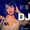 DJ Mera Gaana Baja De - Hey Bro (DJ Nik Remix)