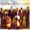 Backstreet Boys - Never Gone (Acoustic Instrumental)[HQ]