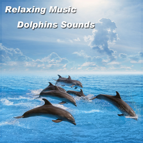 Relaxing Music Dolphins Sounds   Sleep Background - Meditation - Spa - Yoga - Reiki Zen - Tai chi