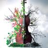 8Dio Solo Cello Designer: