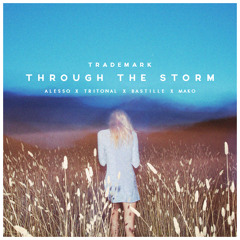 Through The Storm (Alesso X Tritonal X Bastille X Mako)