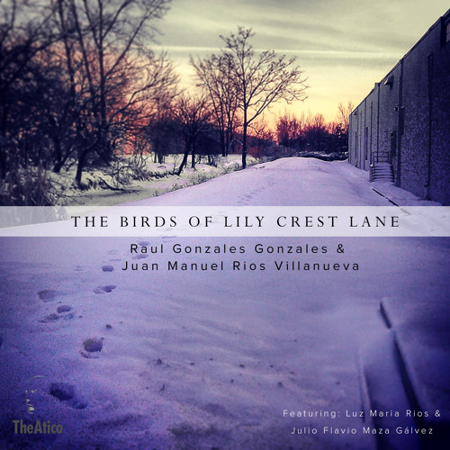The Birds of Lily Crest Lane