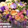 Aria Da Capo  Goldberg - Variationen    BWV 988