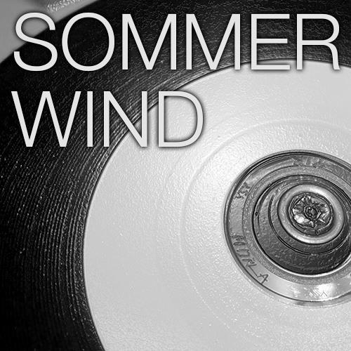 Sommerwind – Panzerfahrt im Regen LP (2013)