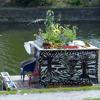 Nacho 2 Garten + Minimalleben