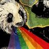 Download [1.5 Speed] Spag Heddy - Pink Koeks Mp3