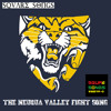 The Neuqua Valley Fight Song (Fight The Team/Across The Field/OSU)