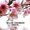 Me & My Toothbrush - On The Wall (Radio Mix)