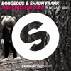 Borgeous & Shaun Frank VS HydroJaxx | This Could Be Tornado | NaDosta Remix |