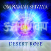 Temple Of Light (Om Namah Shivaya Chant)
