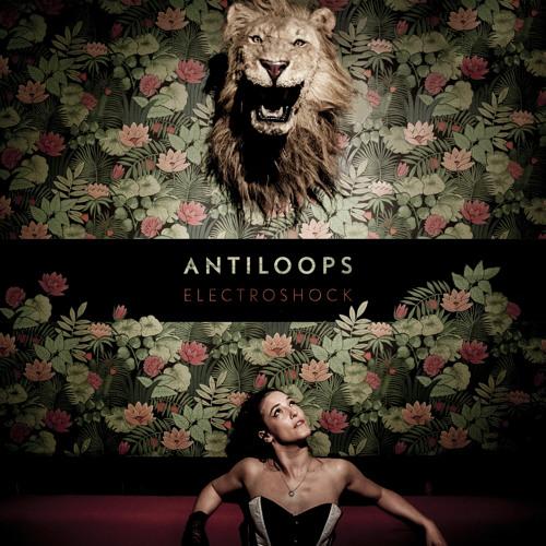 ANTILOOPS - YEP