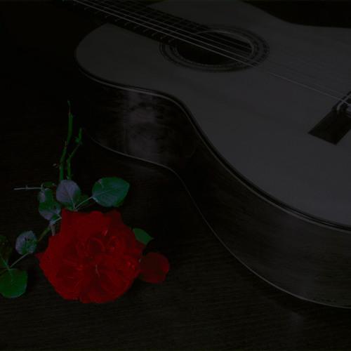 Classical Gas (M. Williams) - Miguel Fernandez (guitar)