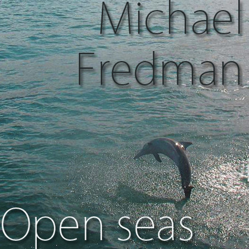 Guitar songs by Michael Fredman