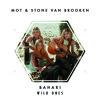 Bahari - Wild Ones (Matter Of Tact & Stone Van Brooken Remix)