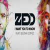 Zedd Ft. Selena Gomez - I Want You To Know cover by Craig Yopp.mp3