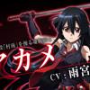 [Panji-Sama] Amamiya Sora - Skyreach (Akame Ga Kill OP I) [Vocal Cover]