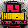 Download Sounds To Sample presents Fly House Vocal Toolz Mp3