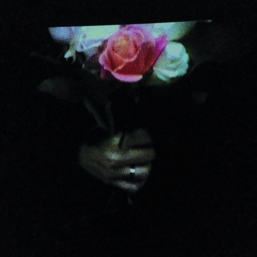 Paper Dollhouse - Aeonflower