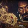 Snoop Dogg - Wrong 4 Dat (Bauss Remix)