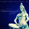 Mahadeva Vishwanatha Sai Natha Harey - Sanjay S.