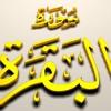 Recitation Al-Baqarah 1-7 Sheikh Mishary Rashed Al-afasy