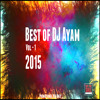 AYAM - FUCKING EDM BARSE ( Experimental Mix )