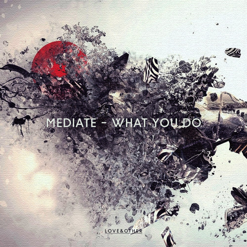 Mediate - What You Do
