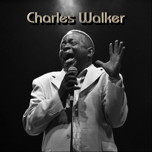 The Other Shoe - Charles Walker