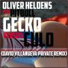 Oliver Heldens Ft. Pitbull - Gecko + Culo (David Villanueva Private) [FREE DOWNLOAD]