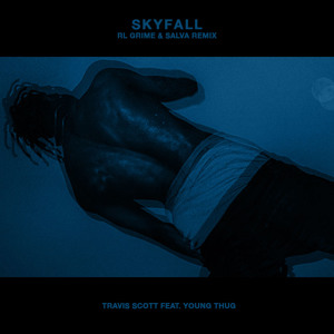 Play Travi$ Scott feat. Young Thug - Skyfall (RL Grime & Salva Remix)