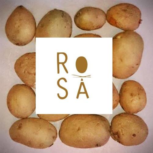 Zappadeus - ROSA Podcast #3