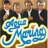 PALOMA AJENA X3 __ Agua Marina  [Dj Jose Yaya]