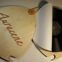 """Sanaare - excerpt from """"Herzglimmer"""" (Sealt Records 2015)"""