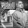 Pitbull -  Bojangles (P-art Dynamic Remix)