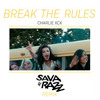 Charlie XCX - Break The Rules (Sava&Razz Remix)[FREE DOWNLOAD]