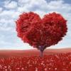 "merasakan cinta - 4minute ""creating love"" (indonesian version by FaFa)"
