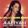 Are You Feeling Me - Aaliyah Tribute  - DJ Fully Loaded Remix