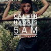Calvin Harris ft Tinashe - 5 AM (g-retro club remix)