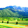Kashmiri Sufiyana songs of legends Muhammad Abdullah Tibbet Bakal,Abdul Aziz Sheikh and others
